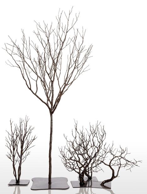 Josh_Hadar-Tree-1.jpg