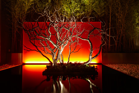 Josh_Hadar-Tree-2.jpg