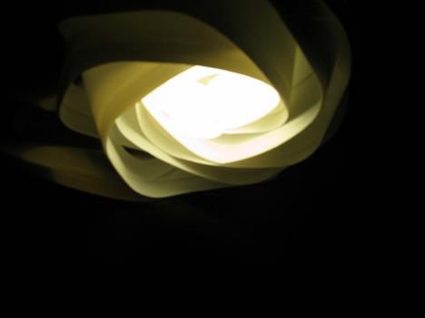 LightTrash-porLucia3.jpg