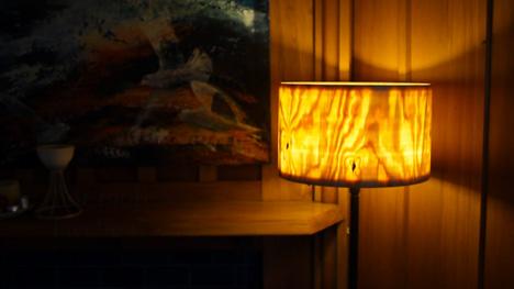 SorenBerger-Lampshade.jpg
