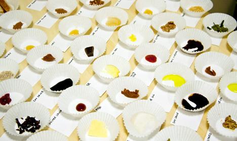 Ento-Flavors1.jpg