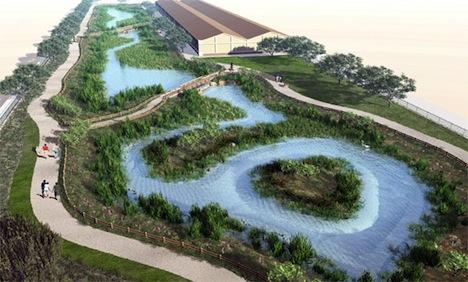 wetlands1jpg.jpg