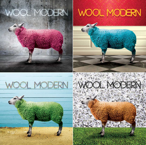 0campforwool001.jpg
