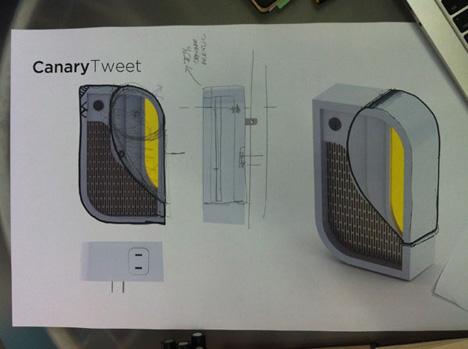 MatthewCrowley-Canary-5.jpg