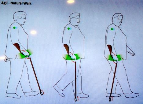 BraunPrize2012_agil_walk.JPG