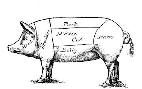 pig_diagram.jpeg