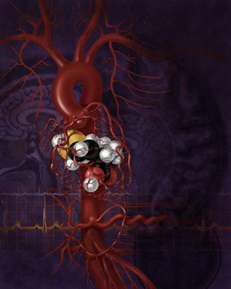AlexandraBaker_DNAIllustration-bloodvessel.jpg