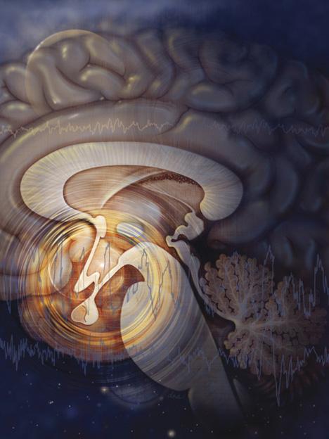 AlexandraBaker_DNAIllustration-brainstem.jpg