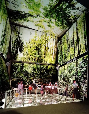 biomuseum4.jpg