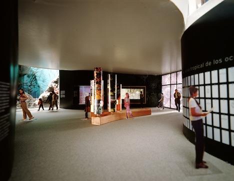biomuseum5.jpg