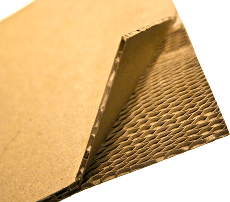 AniSurabhi-Kranium-honeycomb.jpg