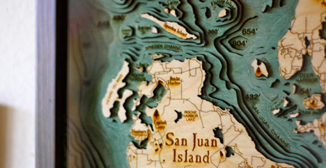 BelowtheBoat-SanJuanIslandDetail.jpg