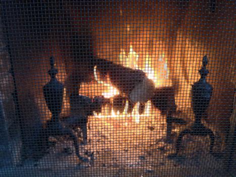 firewood-220.jpg