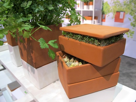 Countertop Aquaponics System : ... Housewares Show 2013: Countertop Gardens and Kitchen Farming - Core77