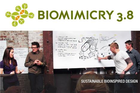 Biomimicry38.jpg