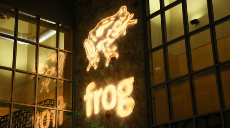 frog-SXSWi-OpeningParty.jpg