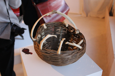 RISD2013-TheNewClarity-CarleyEisenberg-BoneBasket.jpg