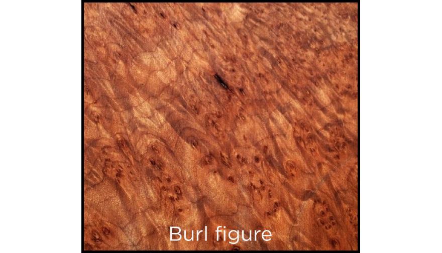 rob-wood-1-07.jpg