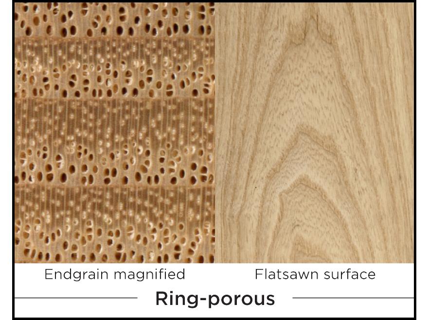 rob-wood-1-08.jpg