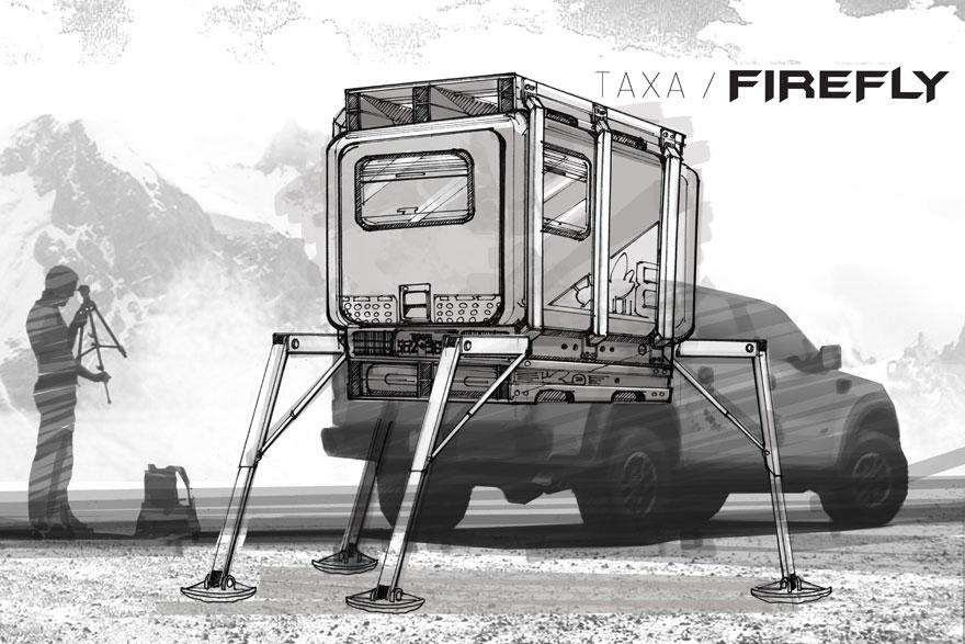 taxa-firefly-06.jpg