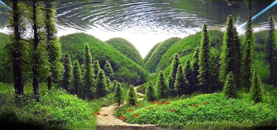 Aqua-Hills.jpg