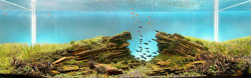 Aqua-Stones.jpg