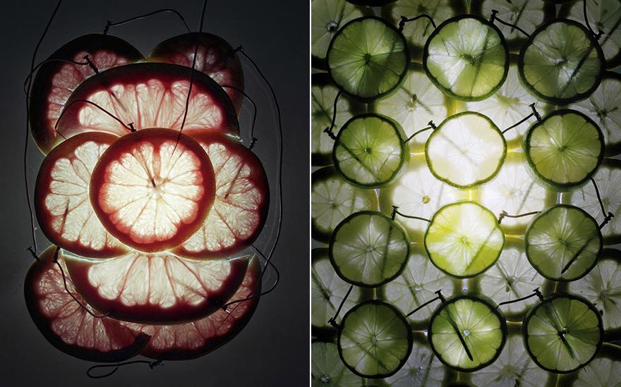 FruitBattery-Comp.jpg