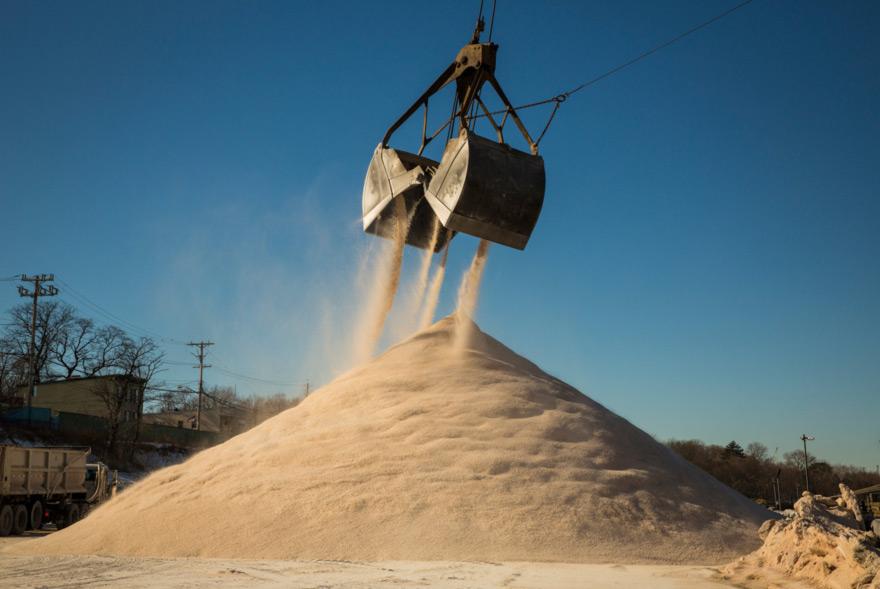 Salt-AngelFrancoNYT.jpg