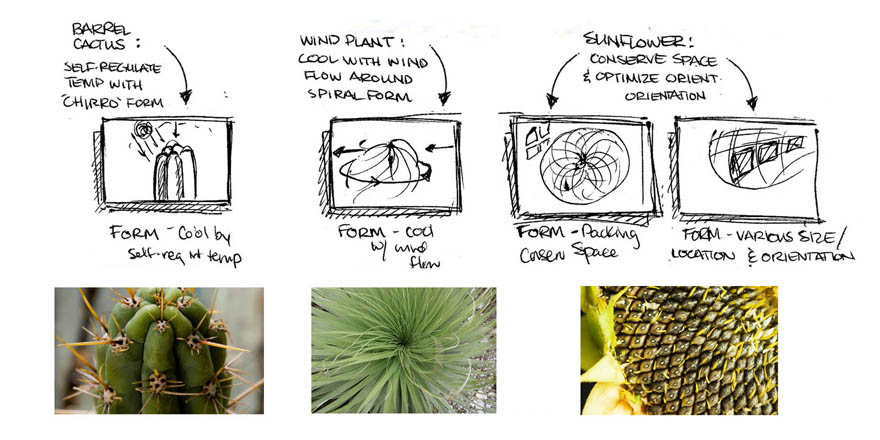 thesis on biomimicry Architectural thesis (covenant university)  biomimicry and the art of well-adapted design  unc charlotte's official youtube channel 4,152.