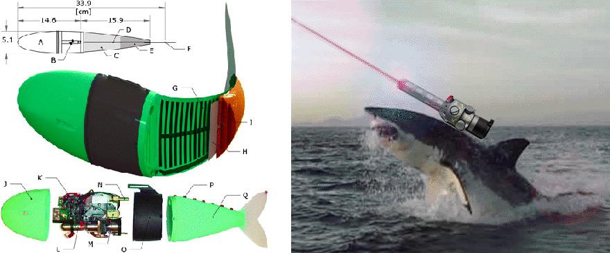 robotfish1-1.jpg