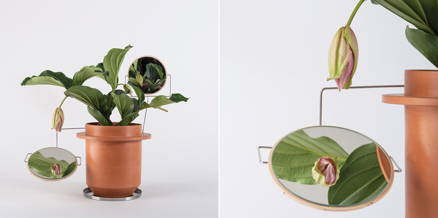 PlantingSystem-MirrorComp.jpg