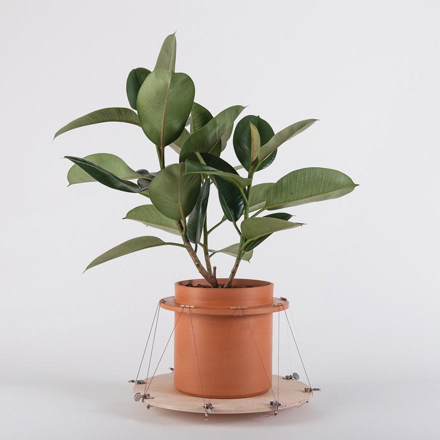 PlantingSystem-Rotation.jpg