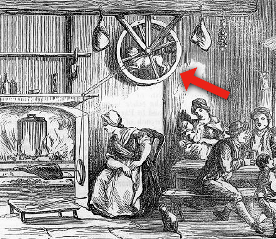 0Turnspit_Dog_Working.jpg