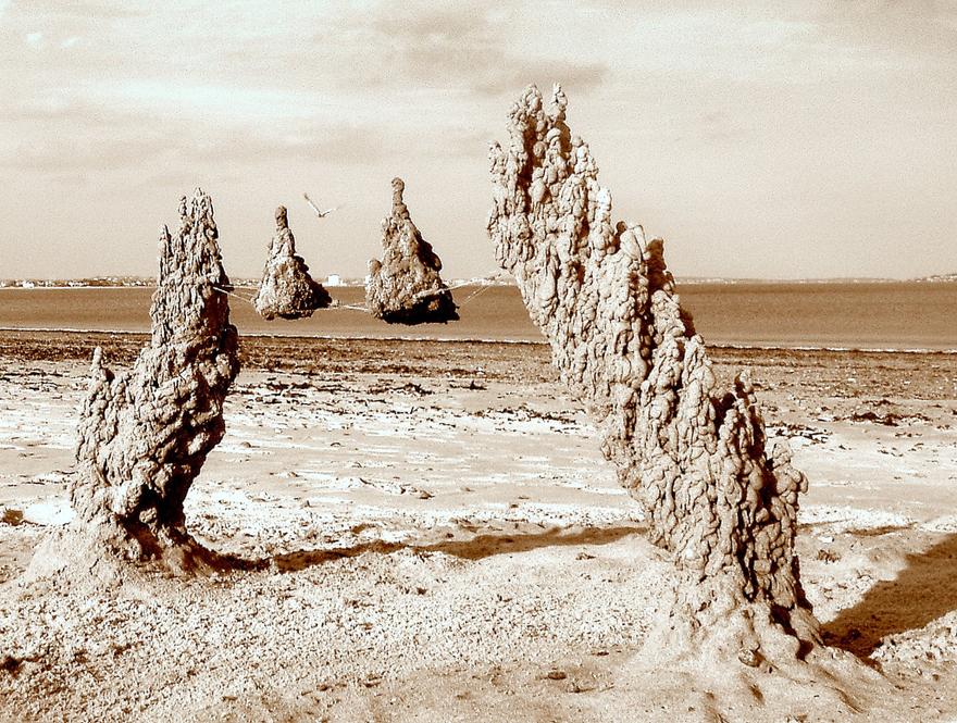 Sandcastle-Lead.jpg