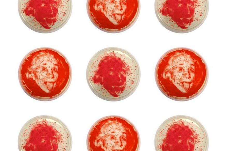BacteriaArt-EinsteinSeries.jpg