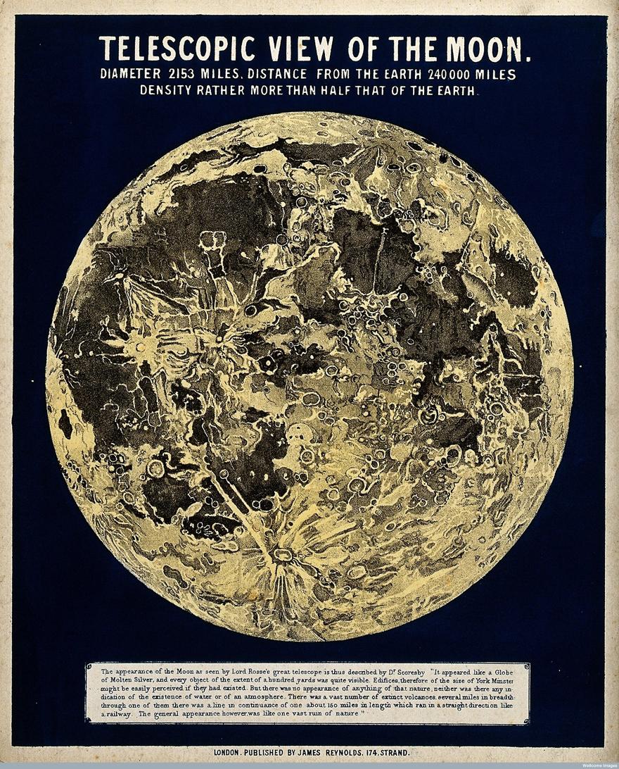 Infographic-Moon.jpg