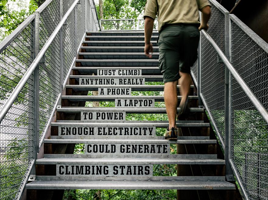 DARoundUps-SustainabilityTreehouse2.jpg
