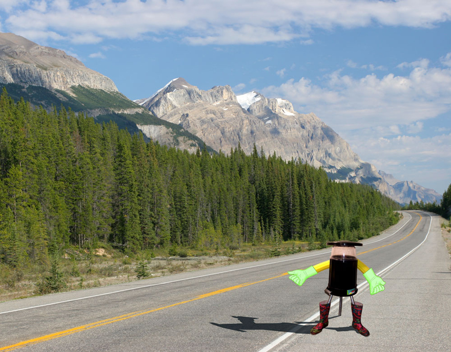 Hitchbot-Lead.jpg