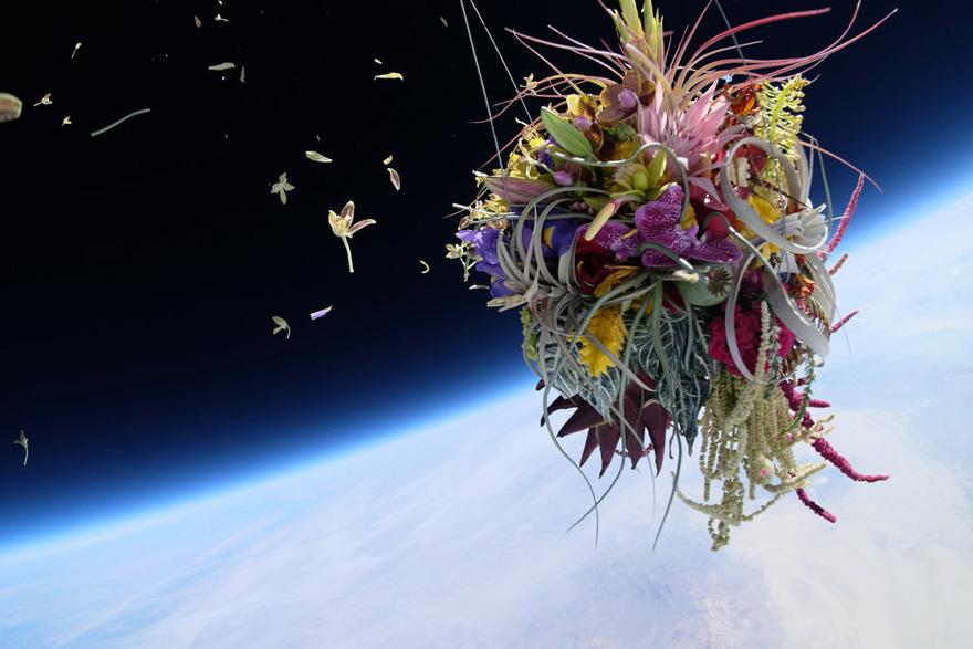 spaceflower5.jpg