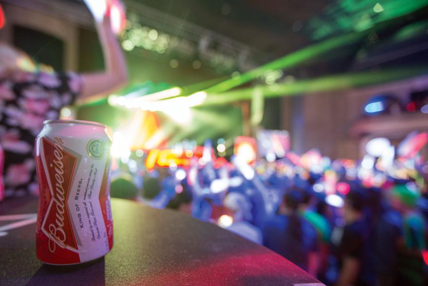 DARoundUps-Budweiser.jpg