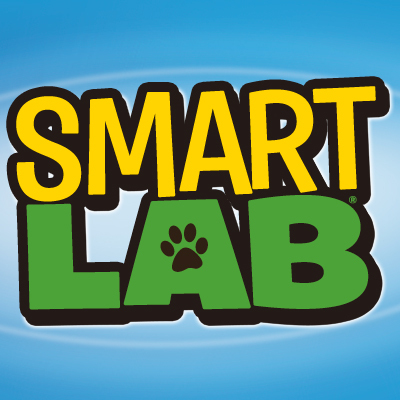 Work for SmartLab Toys!