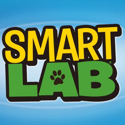 Work for SmartLab Toys!