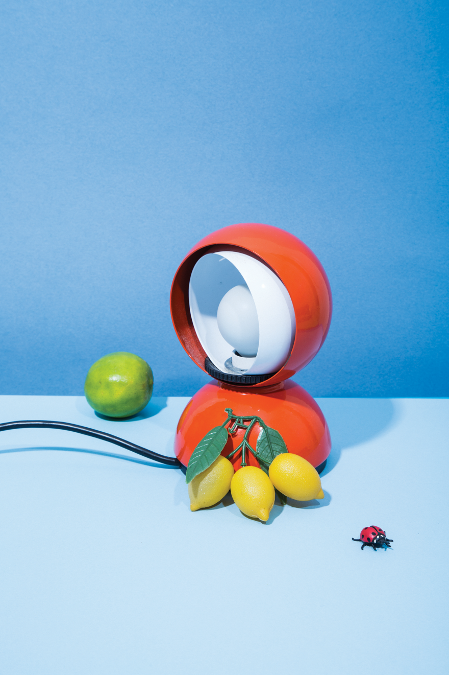 With Visual Puzzles and Funky Still Lifes,  Alphabetacool  Is a Children s Book for Adults (Too)