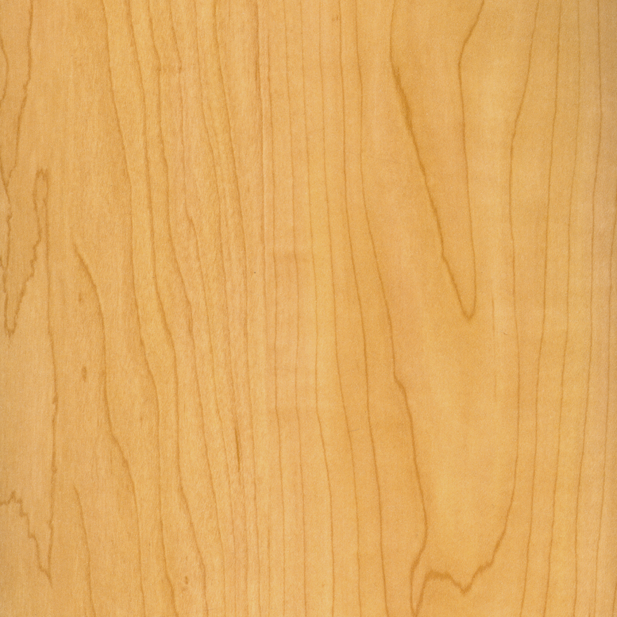 Sugar Maple Wood ~ An introduction to wood species part hard maple