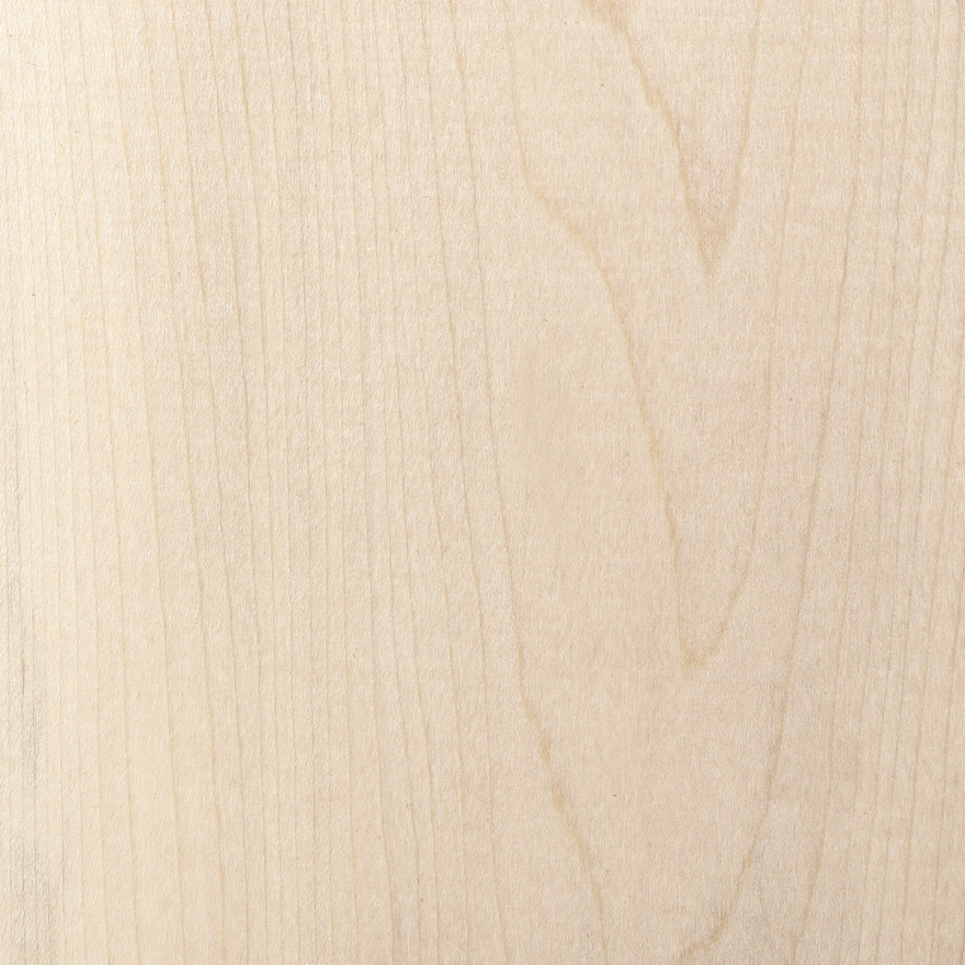 An introduction to wood species part hard maple