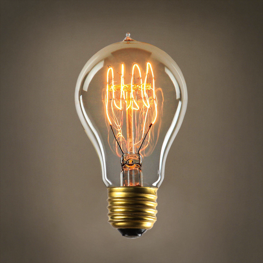 Researchers find evolutionary explanation for why you can for Find a light bulb
