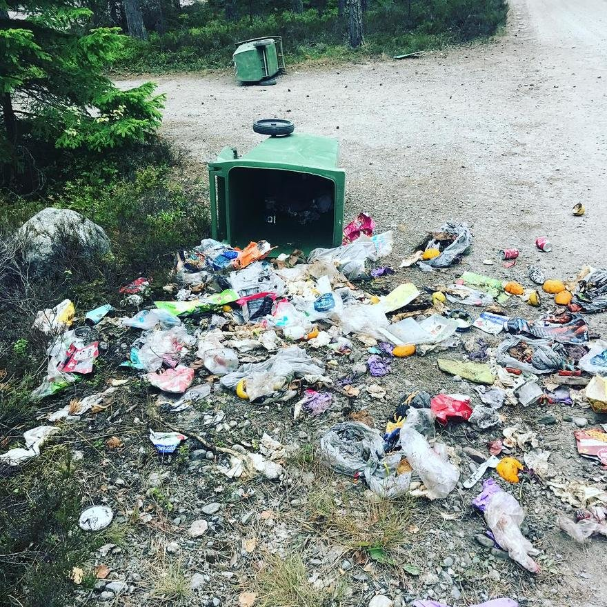 New Swedish Fitness Trend,  Plogging,  Combines Jogging with Picking Up Litter