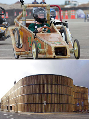 bamboo_car_and_park.jpg