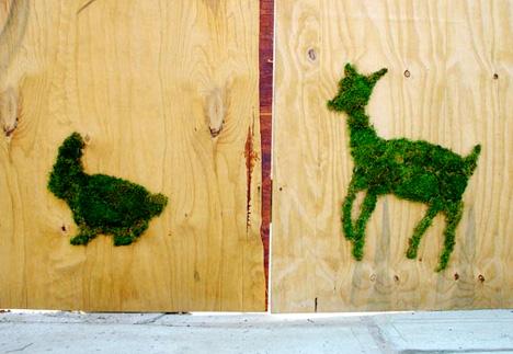 grassfiti.jpg