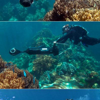 "Google's ""Underwater Street View"" and the SVII Camera That ..."